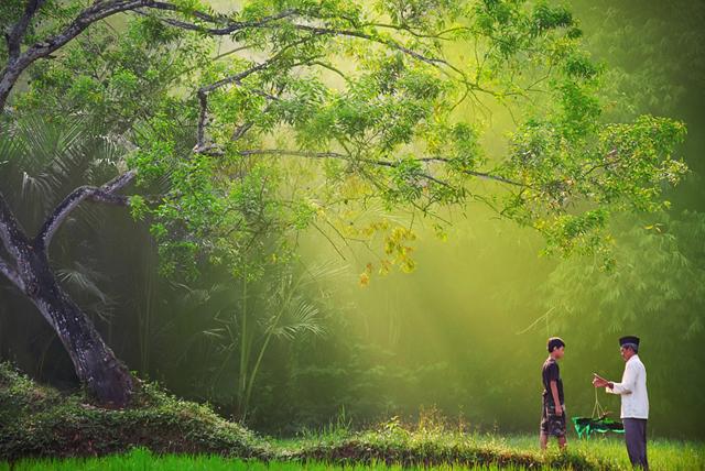 wonderful morning photography