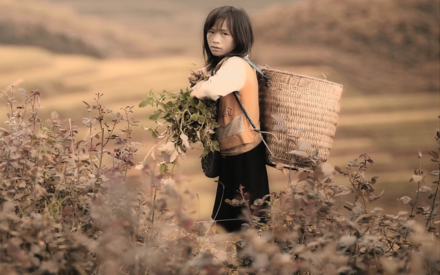 Mesmerising-Landscape-Photography