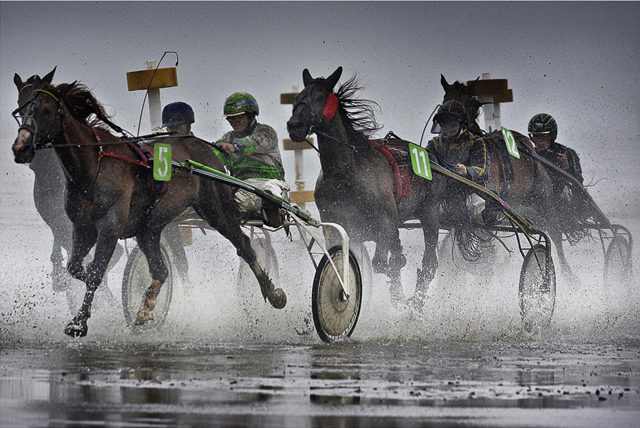55 excellent photographs of sports