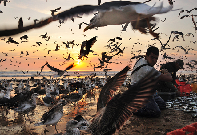 50 amazing sunset photographs