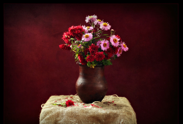 beautiful still life photography