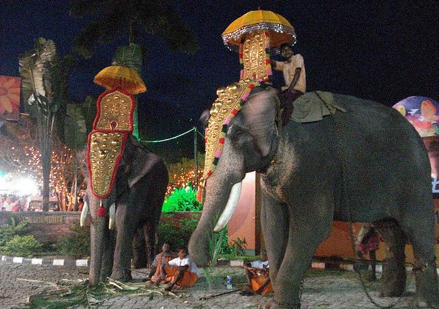 onam celebration photos