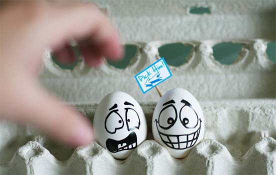 Funny & Creative Egg photography