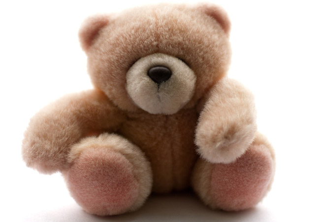 Teddy bear by Berni Beudel
