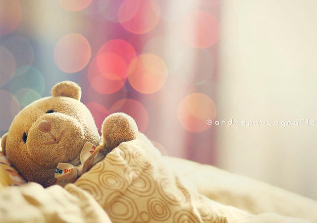 morni teddy bear by andre yordan