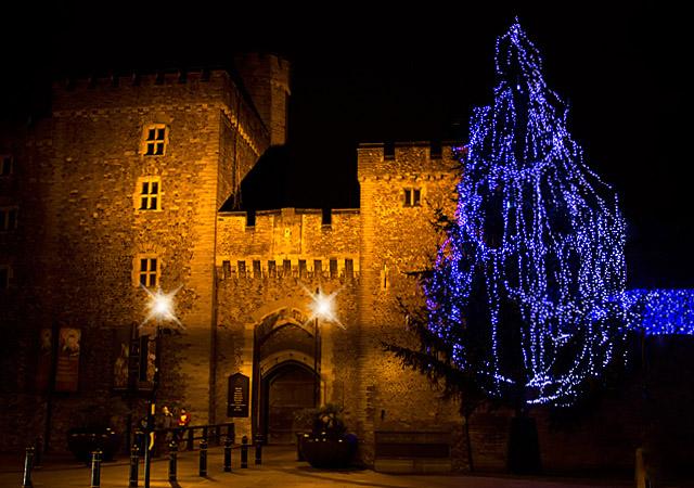 Cardiff castle & Tree by skye_ parker