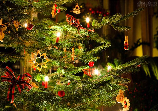 Merry Christmas! by Alina Cürten