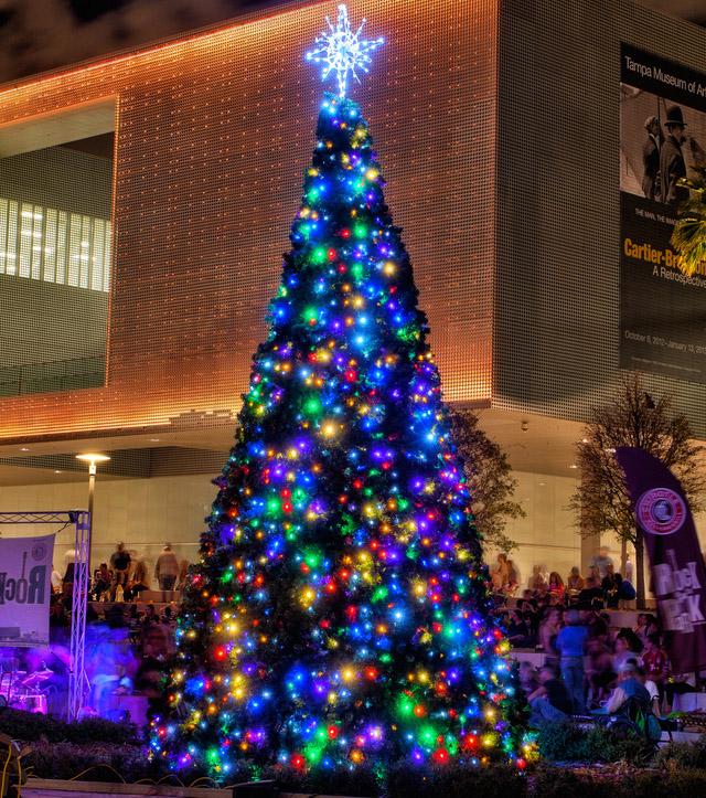 Curtis Hixon Park Christmas Tree by Matthew Paulson