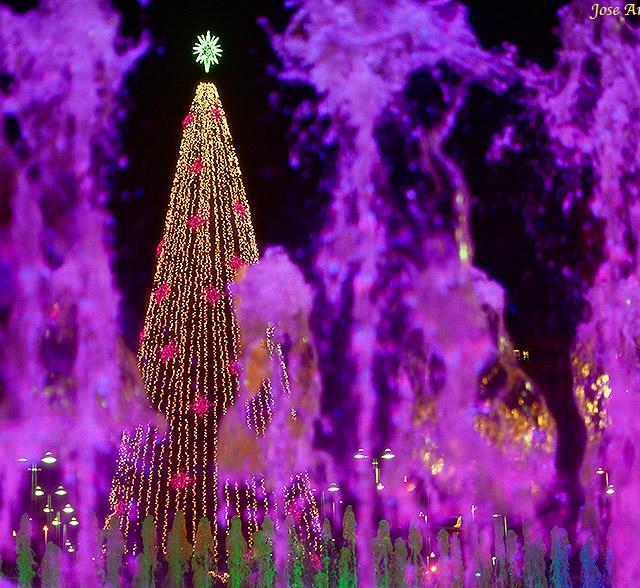 Christmas tree by  Jose A. Jerez