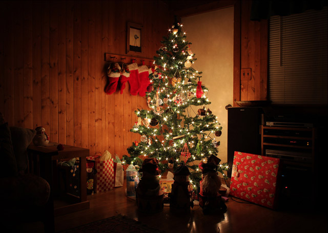 The Christmas Tree by Jean Loper