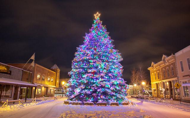 Oh Christmas Tree by Ryan Wright