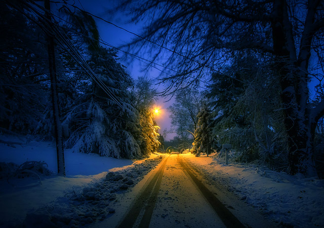 Its Beginning to Look A Lot Like by Bill Fritz