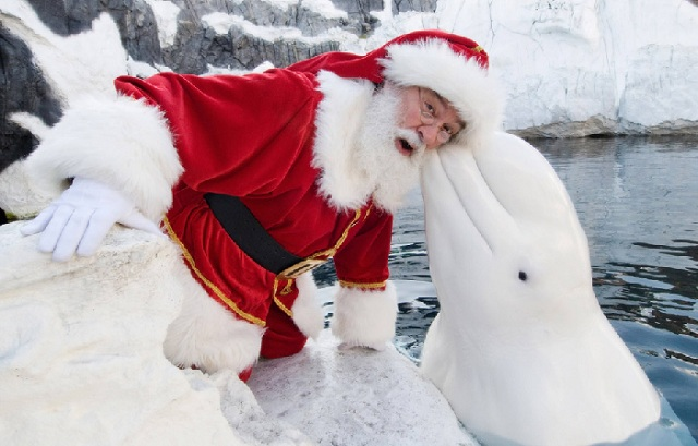 Santa Claus photograph