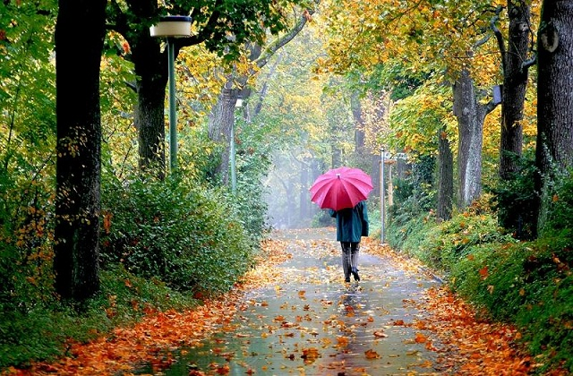 30 amazing and wonderful umbrella pictures