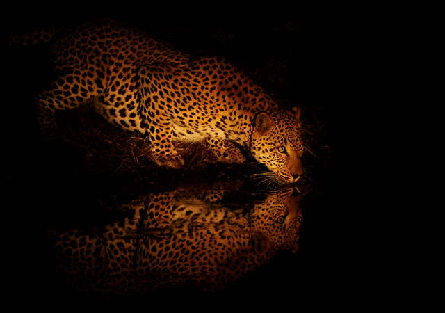 Night Thirst by Rudi Hulshof