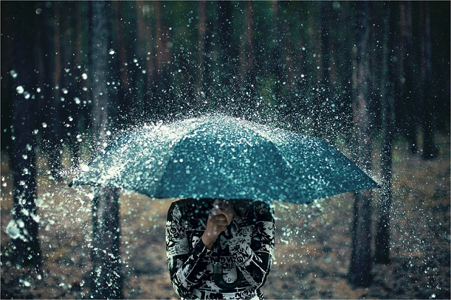beautiful umbrella photographs