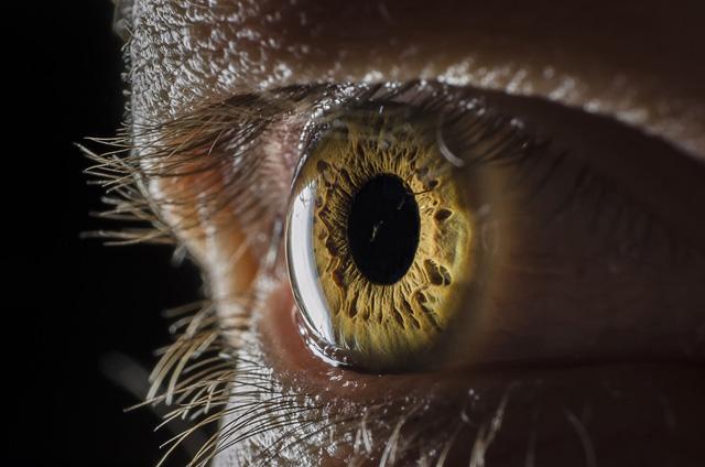 amazing eye photographs incredible snaps