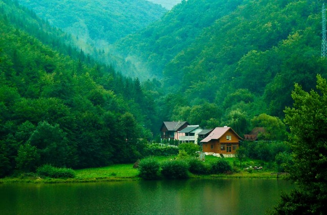 Green valley, Transylvania, Romania
