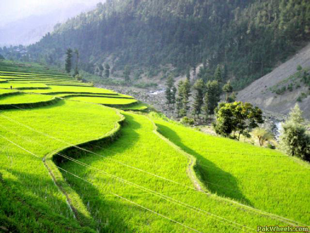 leepa-valley-pakistan