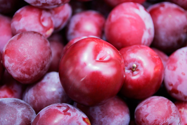 fruit plum images