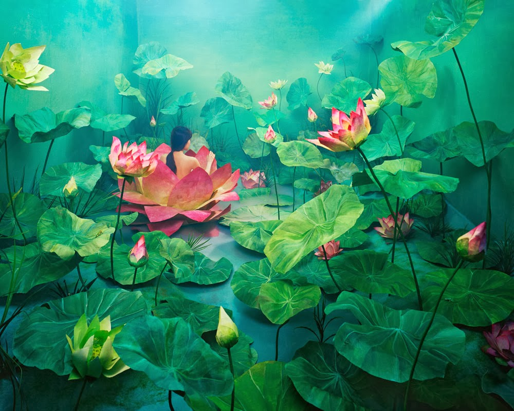 Beautiful Art works by JeeYoung Lee | Incredible Snaps