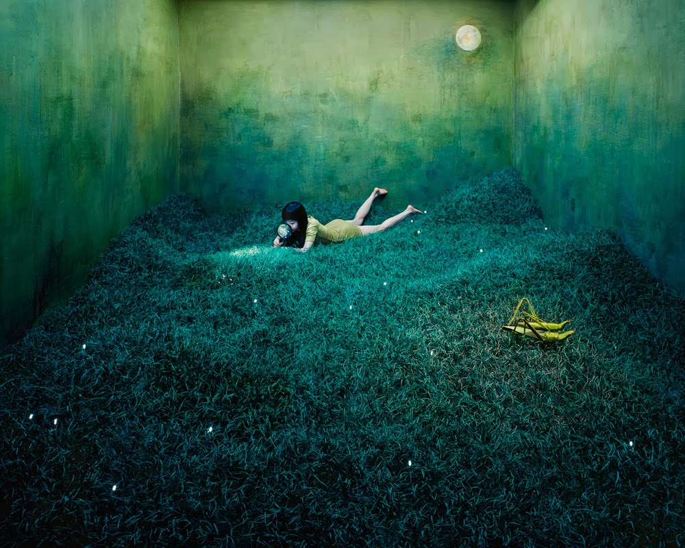 Beautiful Art works by JeeYoung Lee  Incredible Snaps
