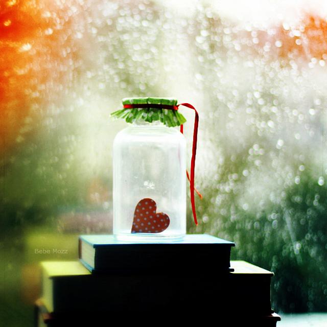 February Rain by Bebe Mozz