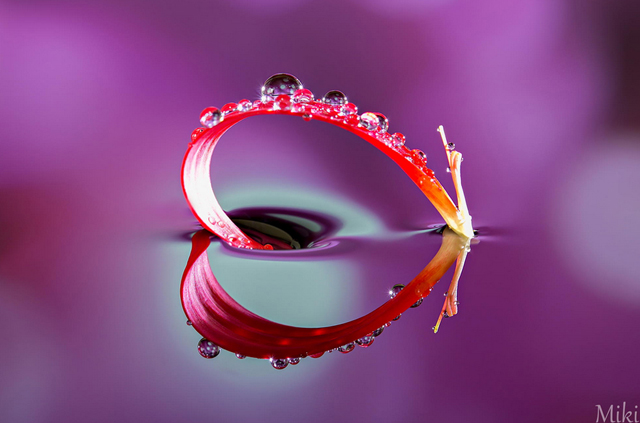 Heart Object by Miki Asai