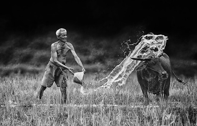 Breathtaking Daily Life of Village People in Indonesia (20)