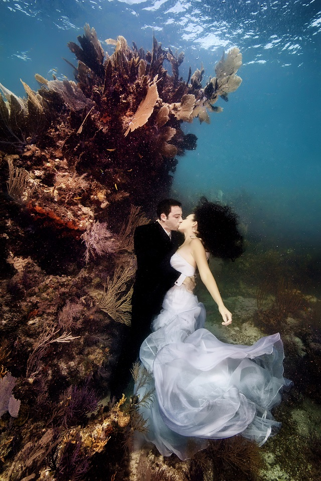 amazing space weddings