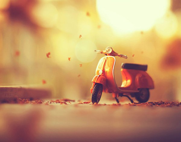 Inspired Photography by Ashraful Arefin (12)