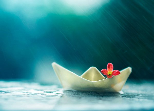 Inspired Photography by Ashraful Arefin (3)