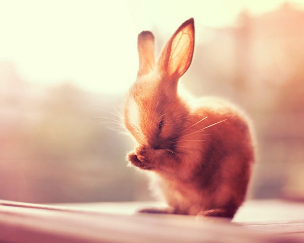 Inspired Photography by Ashraful Arefin (9)