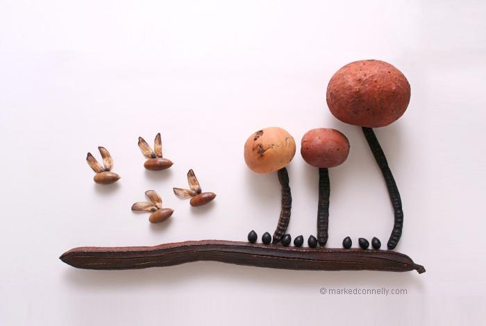 Seed Art based on Situation (9)