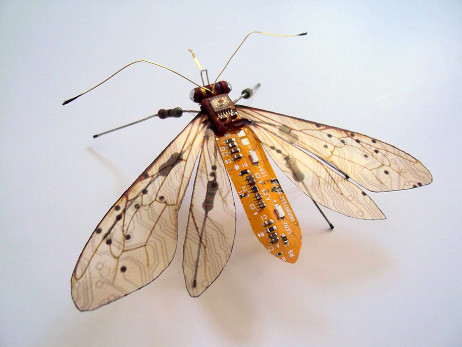 Winged crawly Designs From Old PC Parts And Gadgets Buzz by  Julie Alice Chappell (12)