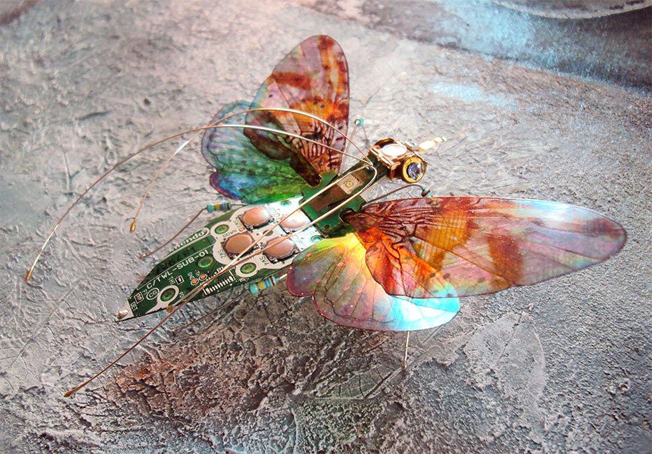 Winged crawly Designs From Old PC Parts And Gadgets Buzz by  Julie Alice Chappell (15)
