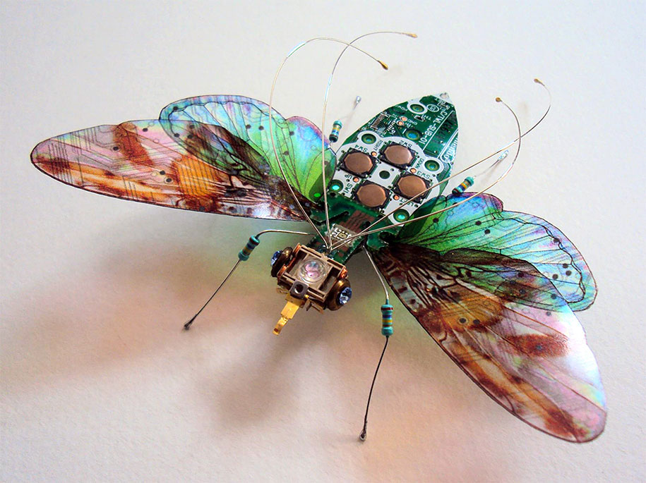 Winged crawly Designs From Old PC Parts And Gadgets Buzz by  Julie Alice Chappell (3)