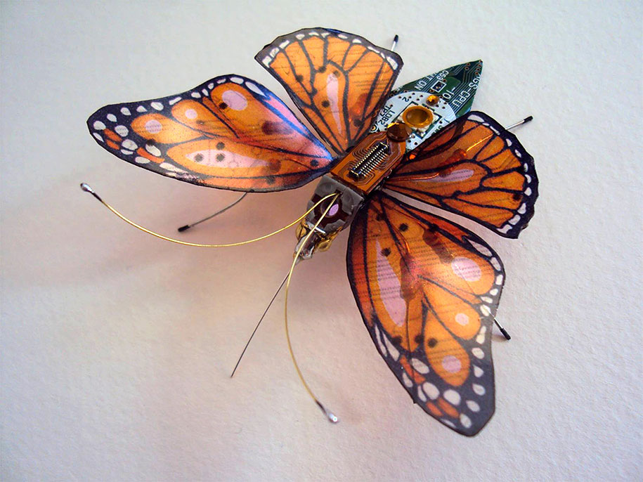 Winged crawly Designs From Old PC Parts And Gadgets Buzz by  Julie Alice Chappell (4)