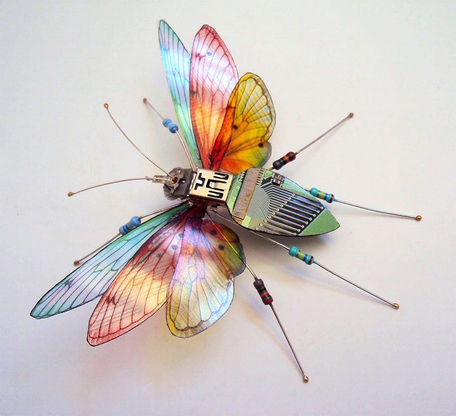 Winged crawly Designs From Old PC Parts And Gadgets Buzz by  Julie Alice Chappell (5)