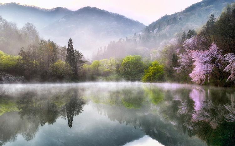 Beautiful Places In Korea Incredible Snaps