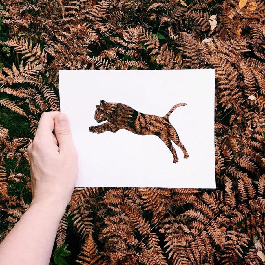 animal-paper-cutout-silhouettes-nikolai-tolstyh-11