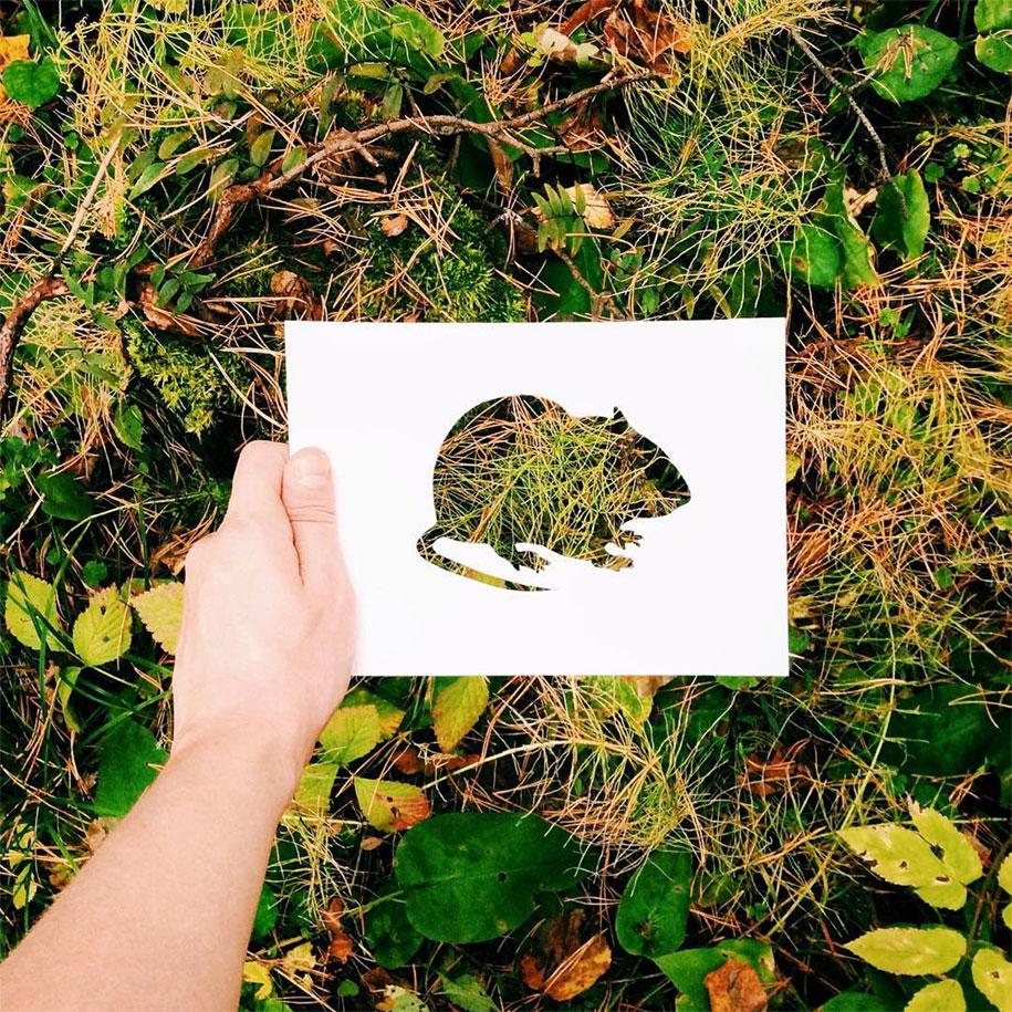 animal-paper-cutout-silhouettes-nikolai-tolstyh-12