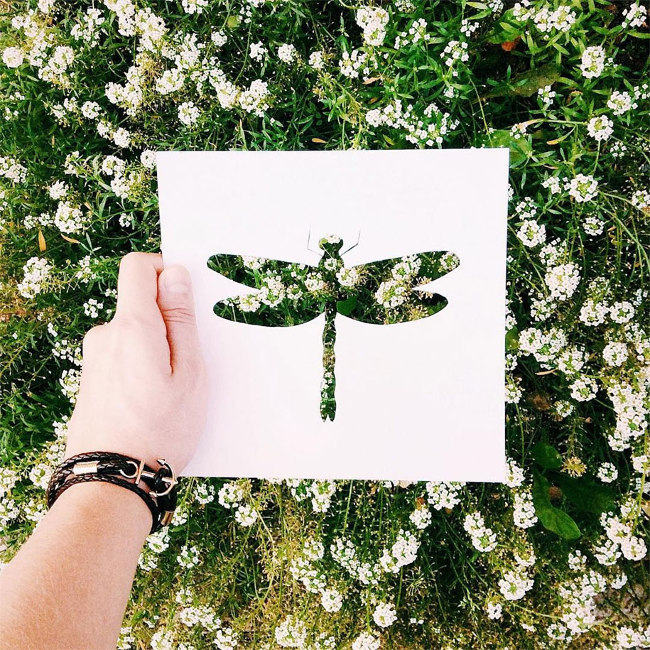 animal-paper-cutout-silhouettes-nikolai-tolstyh-2