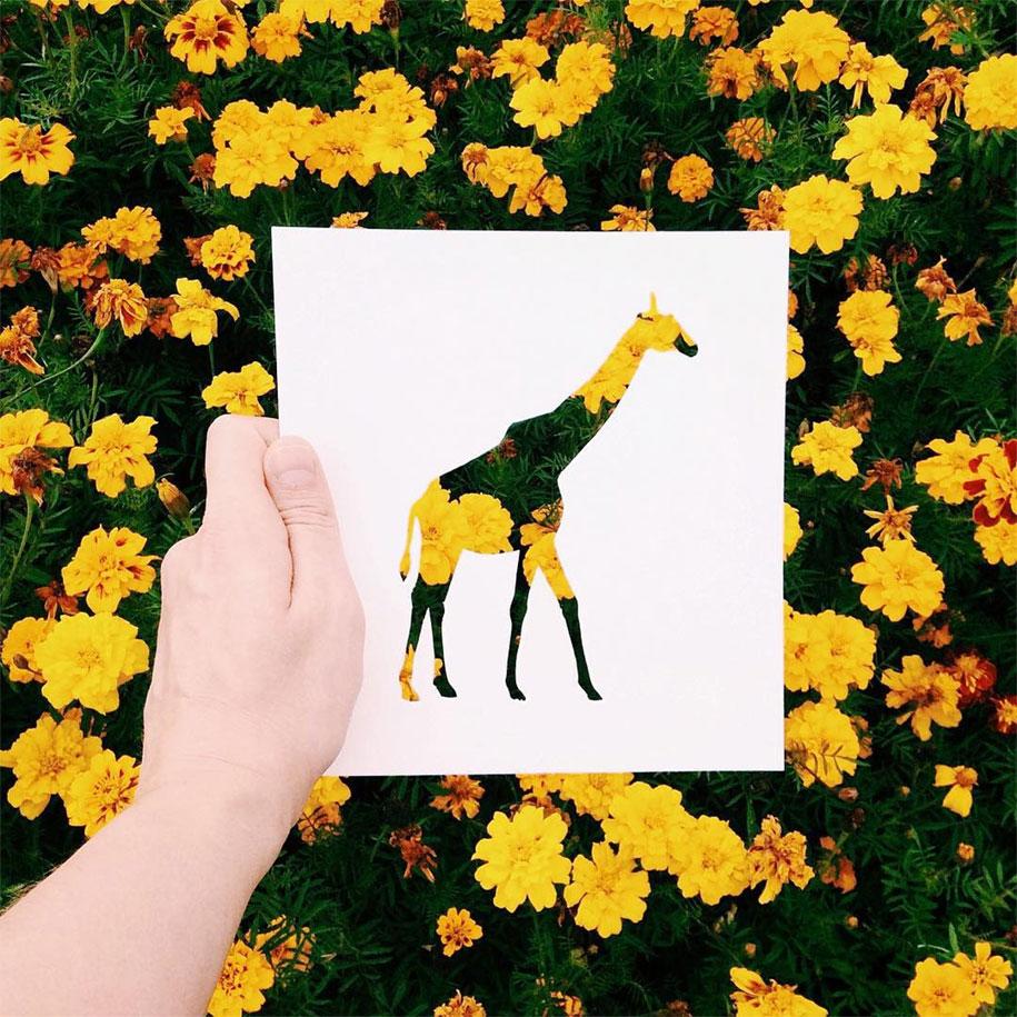 animal-paper-cutout-silhouettes-nikolai-tolstyh-3