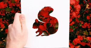 animal-paper-cutout-silhouettes-nikolai-tolstyh-4
