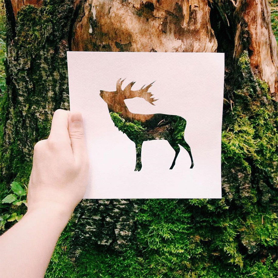 animal-paper-cutout-silhouettes-nikolai-tolstyh-7