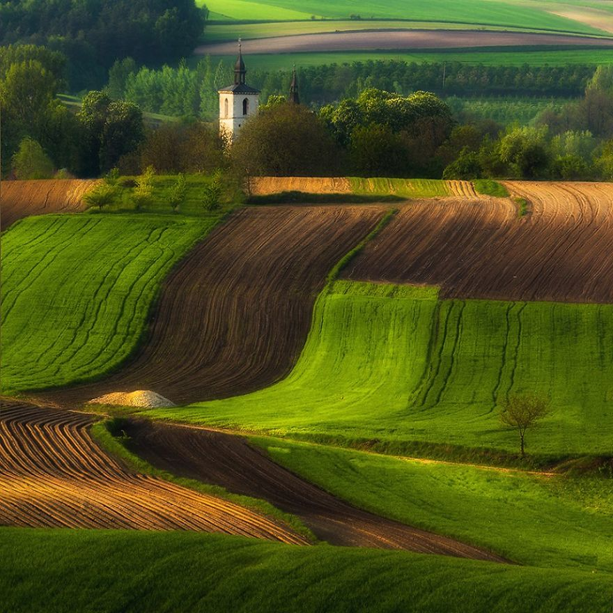 for-20-years-ive-been-photographing-polands-fields-which-look-like-sea-waves-12__880