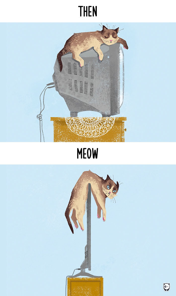 cats-then-now-funny-technology-change-life-1-5715f4a7a450f__700 (1)