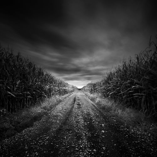 Beautiful Black And White Photography | Incredible Snaps
