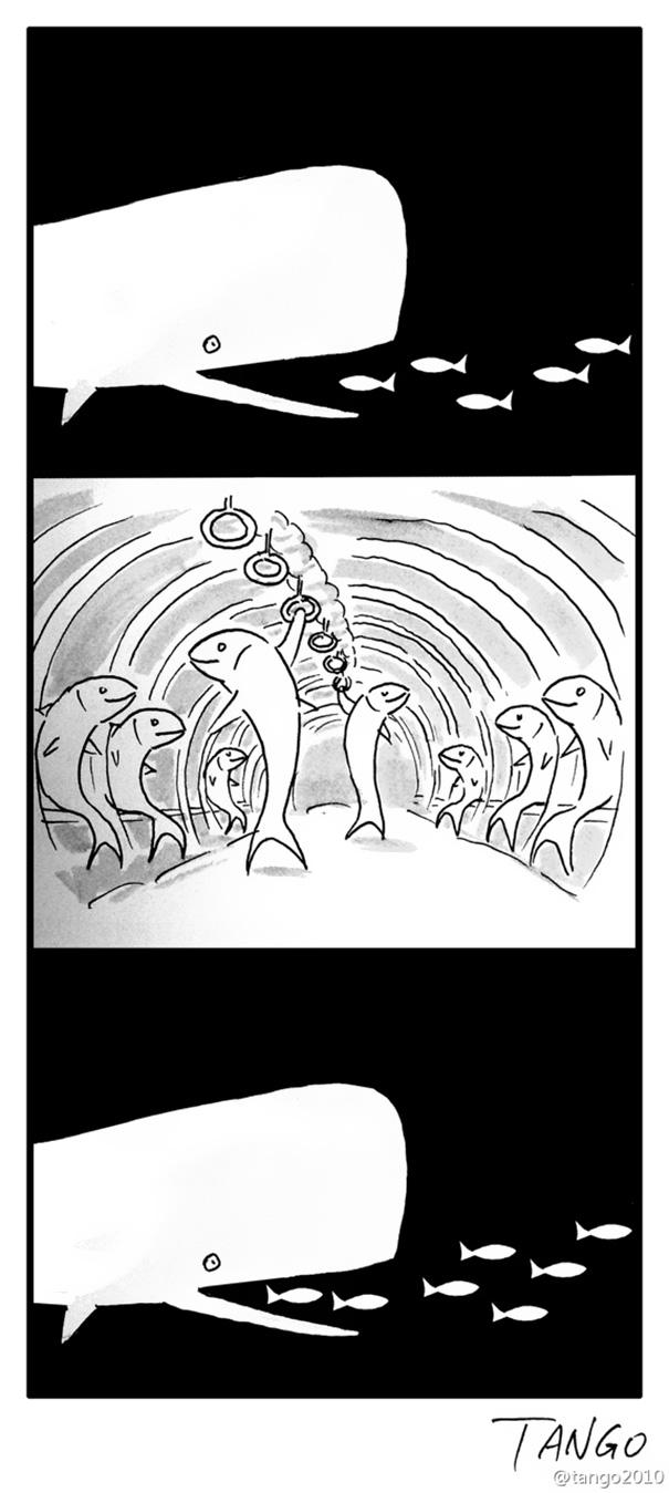 funny-comics-shanghai-tango-38-57b1bd92f3d5e__605
